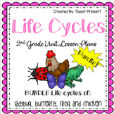 Life Cycle BUNDLE! (Lesson Plans and Activities)