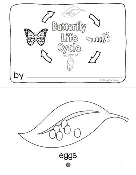Life Cycle BUTTERFLY Emergent Reader PK-K