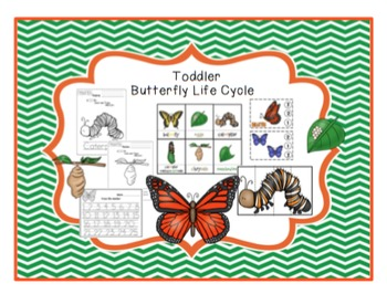 Life Cycle Bundle - 6 Printables- 156 pages