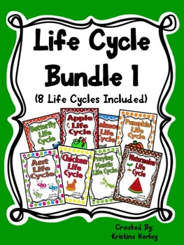 Life Cycle Bundle 1
