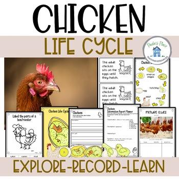Life Cycle Bundle