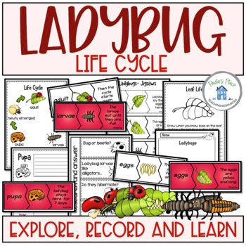 Life Cycle Bundle Activities and Worksheets