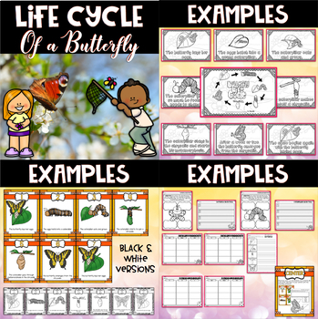 Life Cycle Bundle