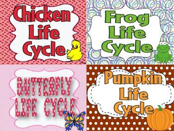 Life Cycle of Chicken, Frog, Butterfly, and Pumpkin Bundle
