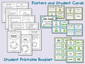 Life Cycle Bundle - Technology Integrated Activities