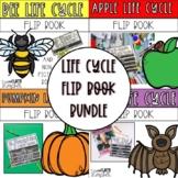 Life Cycle Bundle   Apple   Bat   Pumpkin   Bee
