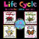 Life Cycle Bundle for Little Learners - Insects - Preschoo