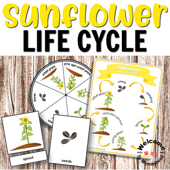 Life Cycle Bundle with 4 Montessori Inspired Life Cycles
