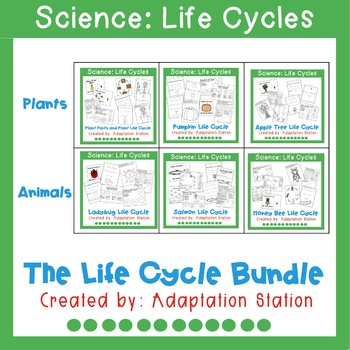Life Cycle Bundles for Special Education