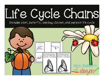 Life Cycle Chains