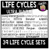 Life Cycle Clip Art Ultra Bundle - 35 sets {Educlips Clipart}