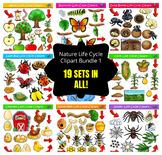 Life Cycle Clipart Mega Bundle #1