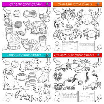 Life Cycle Clipart Mega Bundle #2