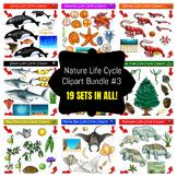 Life Cycle Clipart Mega Bundle #3