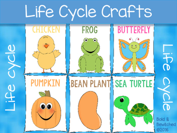 Life Cycle Crafts
