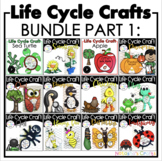 Life Cycle Crafts Bundle
