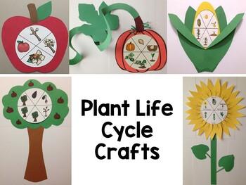 Life Cycle Crafts Bundle ~ Plants {Apple Tree, Apple, Corn, Pumpkin, Sunflower}
