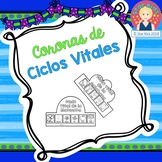 Life Cycle Crowns in SPANISH for Kindergarten and First Grade