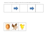 Life Cycle Cut & Paste Worksheets