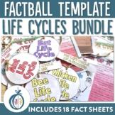 Life Cycle Factball Printable Craftivity and Fact Sheets M