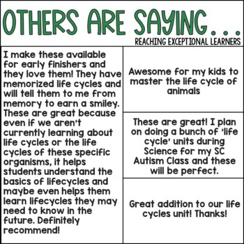 Life Cycle File Folder BUNDLE