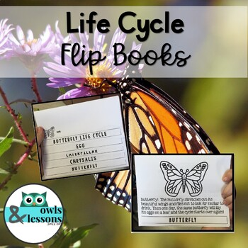 Life Cycle Flip Books