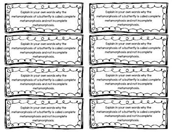 Life Cycle Foldable and Activity for Interactive Notebooks