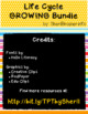Life Cycle GROWING Bundle | English