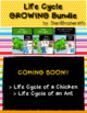 Life Cycle MEGA Bundle | English