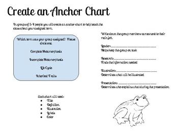 Life Cycle Group Anchor Chart