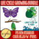 Life Cycle Bundle Clip Art