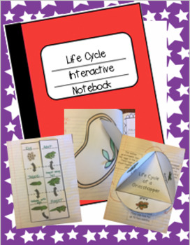 Life Cycle Interactive Notebook
