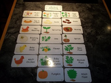 Life Cycle Laminated Flash Cards.  Science Flash Cards. Free Shipping.