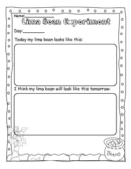 Life Cycle ~ Lima Bean Recording and Observation Book
