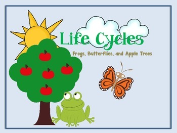 Life Cycle Match