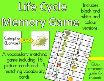 Life Cycle Memory