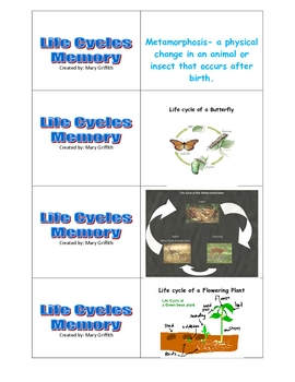 Life Cycle Memory-Butterfly, White-tailed deer, and Flowering Plant