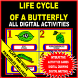 Life Cycle Of A Butterfly Activity (Digital and Black/Whit