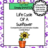 Life Cycle Of A Sunflower Emergent Reader Book AND Interactive Activities