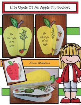 Life Cycle Of An Apple Flip Booklet
