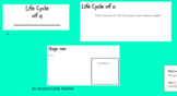Life Cycle Power Point Template- Research