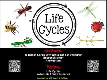 Life Cycle: QR Code Insect Cards & Research