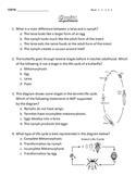 Life Cycle Quiz: Complete & Incomplete Metamorphosis
