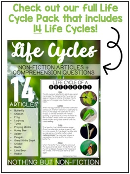 Life Cycle Reading Passage: Mosquito ::FREEBIE::