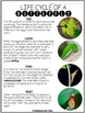 Life Cycle Reading Passages