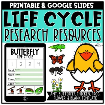 Life Cycle Research Resources for Butterfly, Frog, Chicken