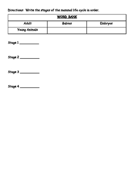 Life Cycle Science Test/Quiz