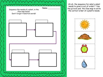 Life Cycle Sequence Lesson
