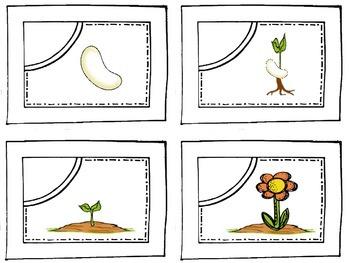 Life Cycle Sequencing Bundle