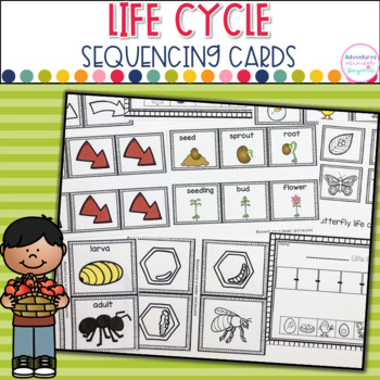 Life Cycle Sequencing- Cards and Printables
